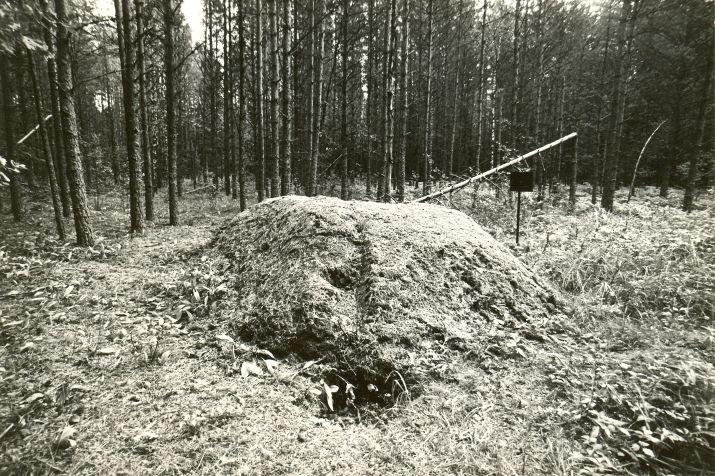 Ohvrikivi. Foto: M. Pakler, 13.09.1979.