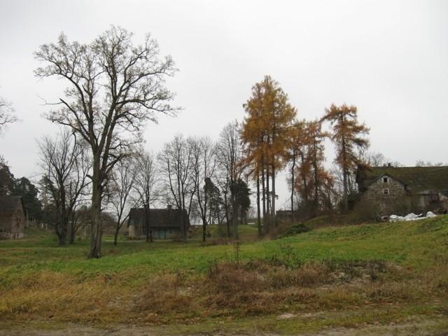 Sõmerpalu mõisa park. Foto Tõnis Taavet, 04.11.2010.