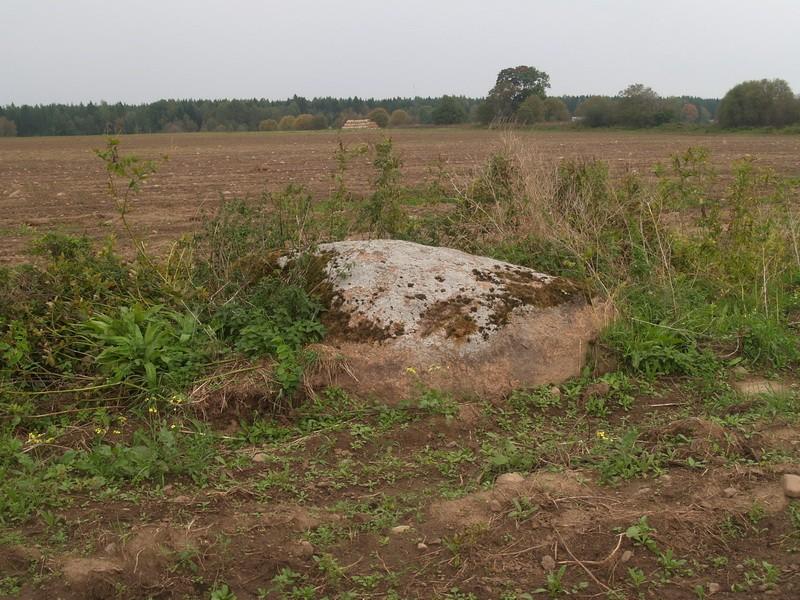 Lohukivi reg nr 10446. Foto: Tõnno Jonuks, 13.09.2010.