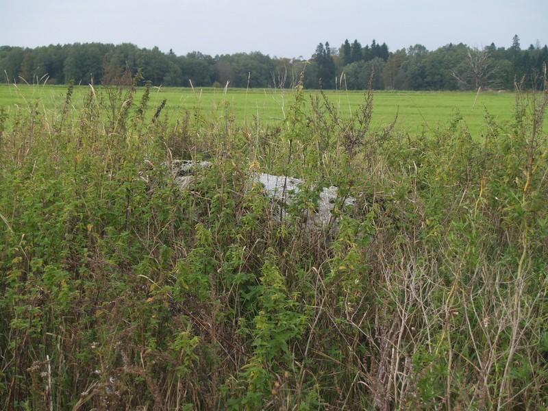 Lohukivi reg nr 10436. Foto: Tõnno Jonuks, 13.09.2010.