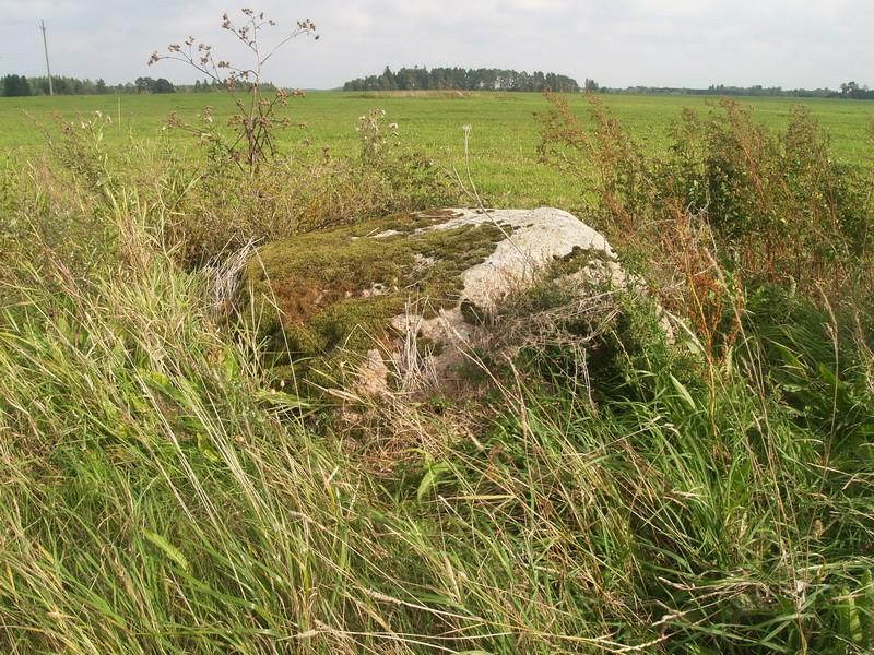 Lohukivi reg nr 10482. Foto: Tõnno Jonuks, 14.09.2010.