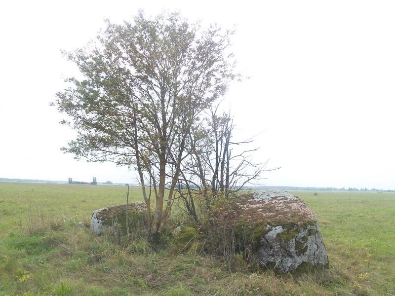 Lohukivi reg nr 10479. Foto: Tõnno Jonuks, 14.09.2010.
