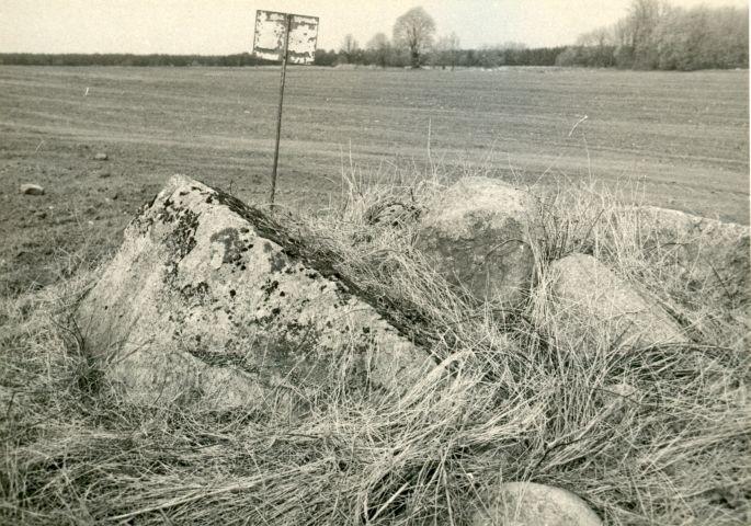 E. Väljal. 1980. aastad. Vaade mälestisele lõunast.