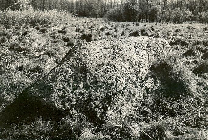 Foto: E. Väljal, 05.05.1989.