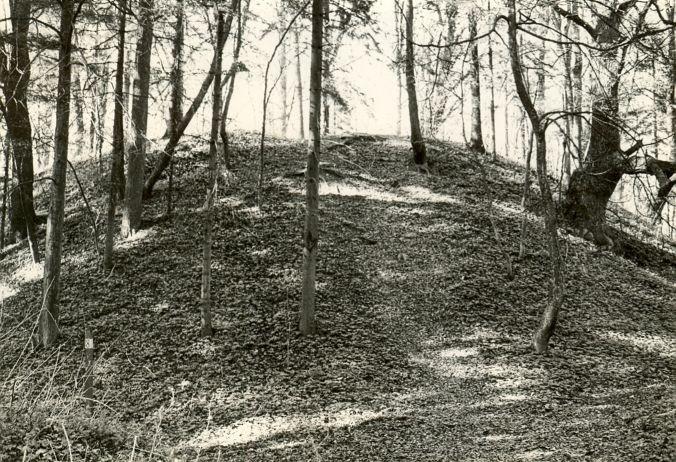 Linnamägi, otsavaade - lõunast. Foto: E. Väljal, 16.05.1985.