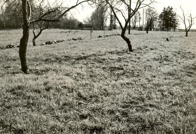 Maa-alune kalmistu - põhjast. Foto: E. Väljal, 16.05.1985.