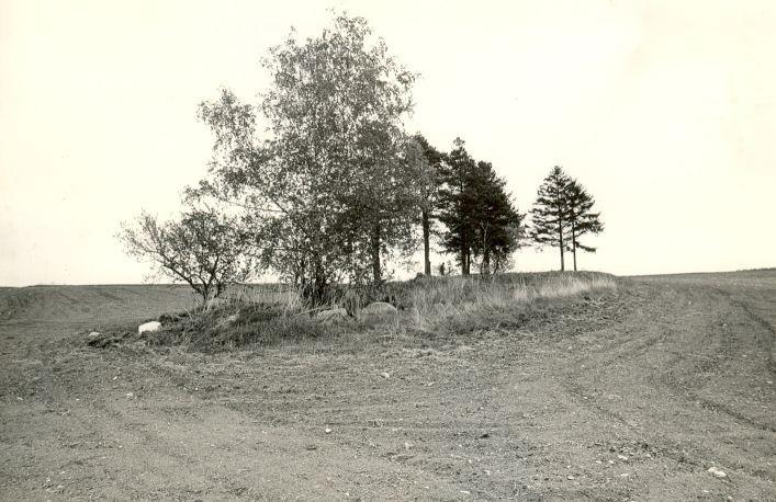 Maa-alune kalmistu - edelast. Foto: M. Pakler, 13.05.1986.