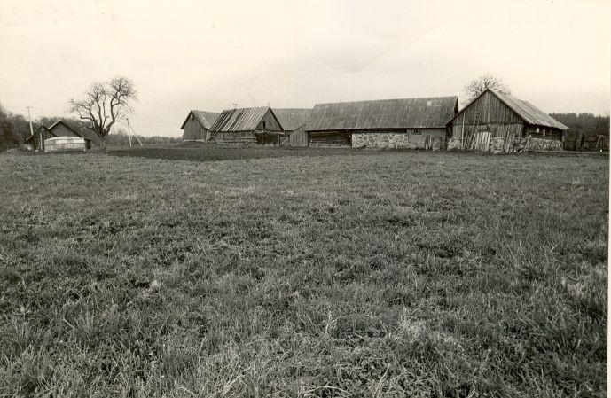 Asulakoht - läänest. Foto: M. Pakler, 14.05.1987.