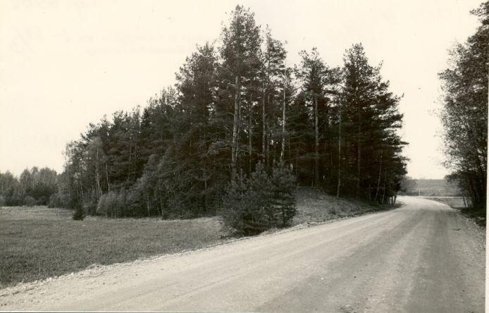 Maa-alune kalmistu - läänest. Foto: M. Pakler, 14.05.1987.