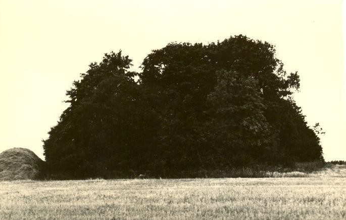 Kivikalme. Foto: M. Pakler, 1971.