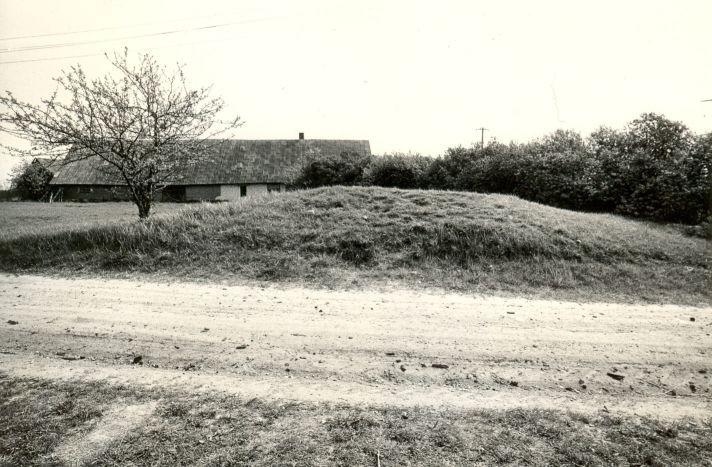 Kivikalme - edelast. Foto: M. Pakler, 12.05.1986.