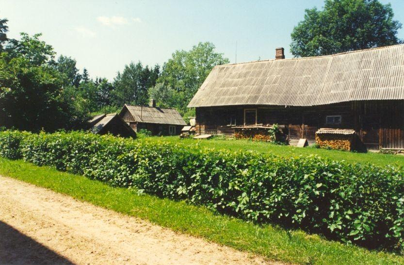 Kalmistu - idast. Foto: A. Sarv, 30.06.1997.