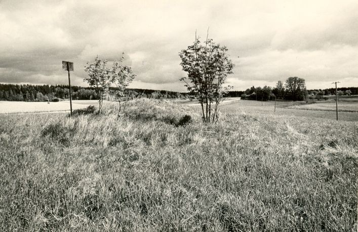 Kivikalme - edelast. Foto: M. Pakler, 13.05.1986.