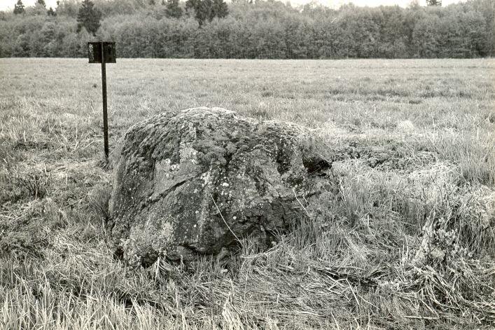 Ohvrikivi - loodest. Foto: M. Pakler, 12.05.1986.