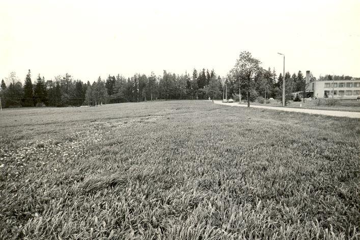 Maa-alune kalmistu - lõunast. Foto: M. Pakler, 14.05.1986.