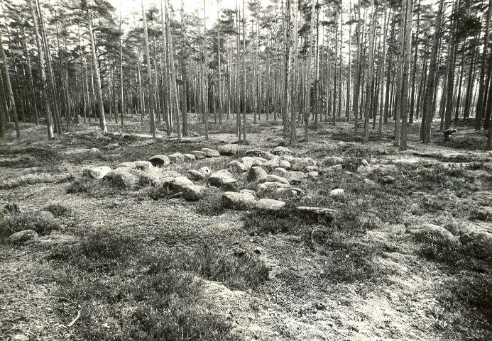Kääpad ja kivikalme. Foto: M. Pakler, 20.10.1987.