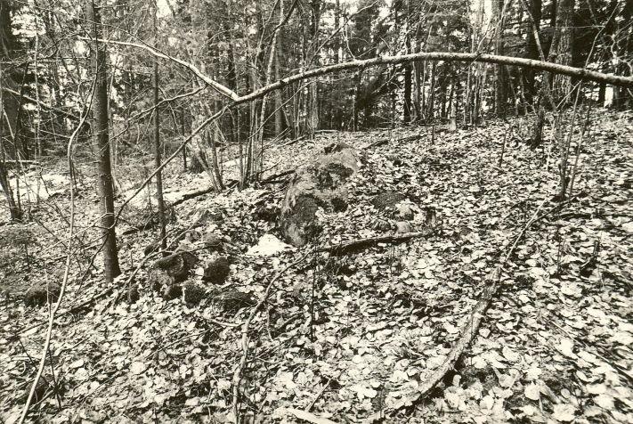 Linnamägi. Foto: M. Pakler, 22.04.1980.