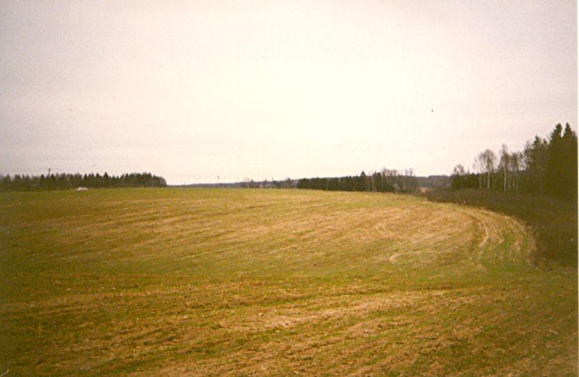Külakalmistu loodeosa - põhjakirdest. Foto: E. Tootsi, 19.11.1997.