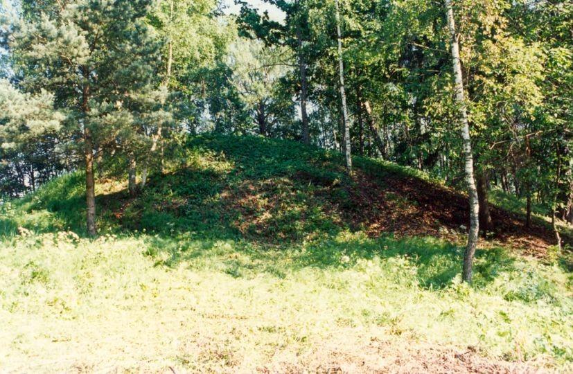 Linnamägi - põhjaots põhjast. Foto: A. Sarv, 30.06.1997.