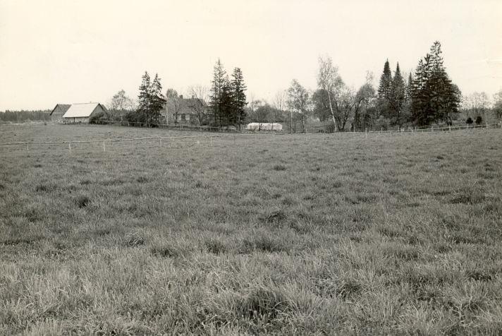 Asulakoht - loodest. Foto: M. Pakler, 13.05.1986.