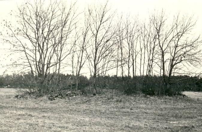 E.Väljal, 1985. a. Vaade mälestisele edelast.