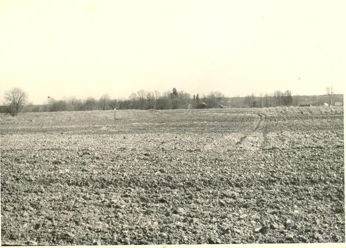 """3 kivikalmet (reg nr 10204-10206 (17-19-k)) - """"Kääpamäed"""". Foto: H. Joonuks, 28.04.1977."""