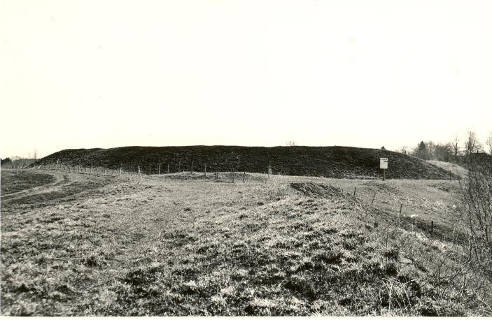 Linnuse otsavall - edelast. Foto: O. Multer, mai 1983.