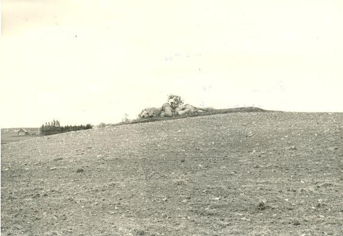 Kivikalme - läänest. Foto: H. Joonuks, 1977.