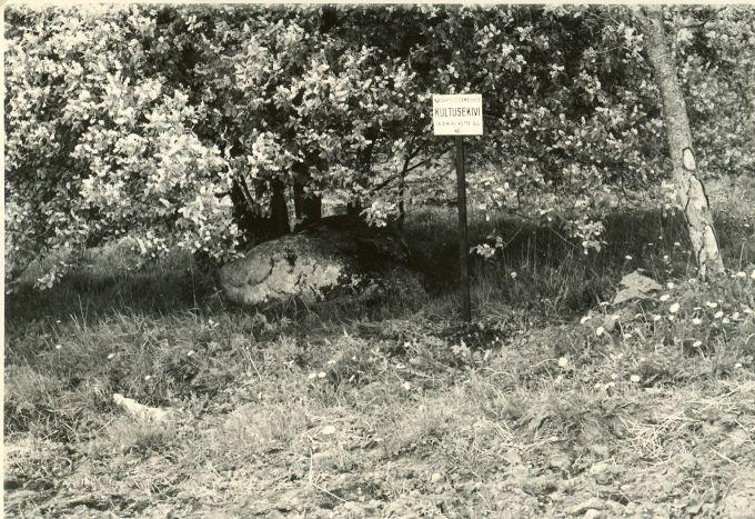 Kultusekivi - kirdest. Foto: H. Joonuks, 1977.