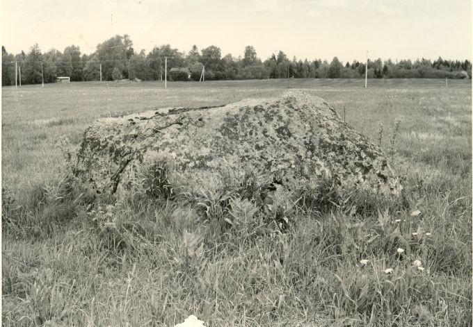 Kultusekivi - idast. Foto: H. Joonuks, 1977.