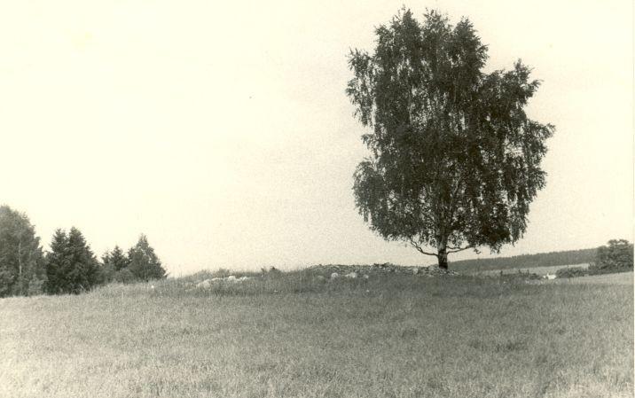 Kivikalme - edelast. Foto: H. Joonuks, 1976.