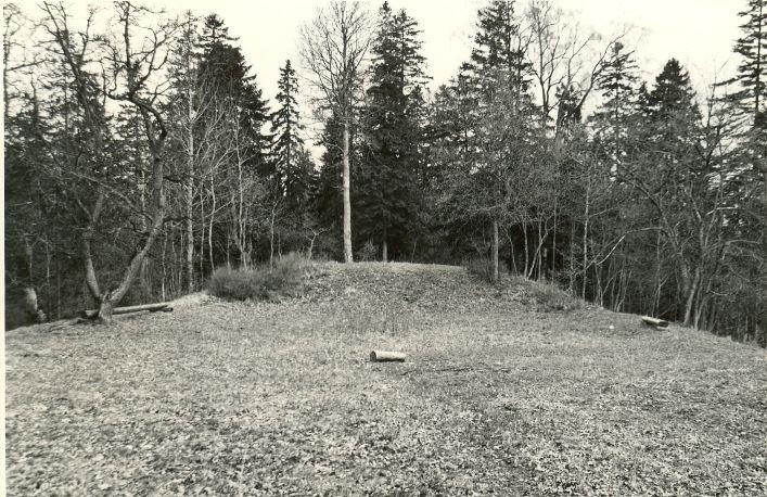 """Linnamägi """"Sadulamägi"""" - loodevall kaguvallilt. Foto: O. Multer, mai 1983."""