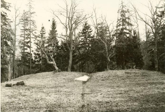 """Linnamägi """"Sadulamägi"""" - lõunavall põhjast. Foto: H. Joonuks, 1979."""