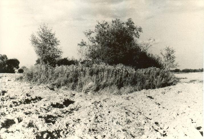 Kivikalme - läänest. Foto: H. Joonuks, mai 1976.