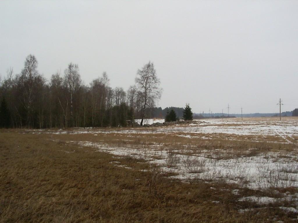 Vaade eemalt lõunast. Foto: Ulla Kadakas, 30.03.2006.