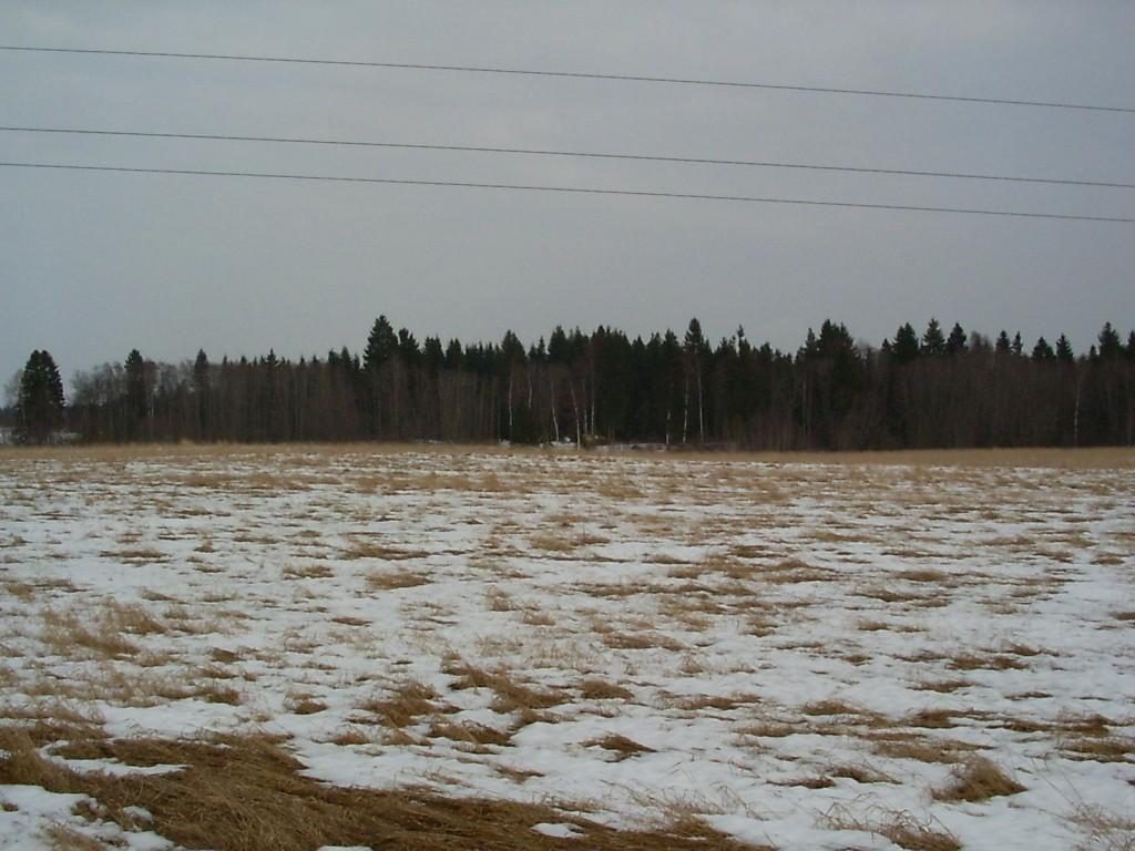 Vaade asula poole läänest.  Autor Ulla Kadakas  Kuupäev  30.03.2006