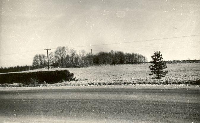 A.Lavi, 1979.a. Vaade mälestistele 18129 ja 18130 loodest.