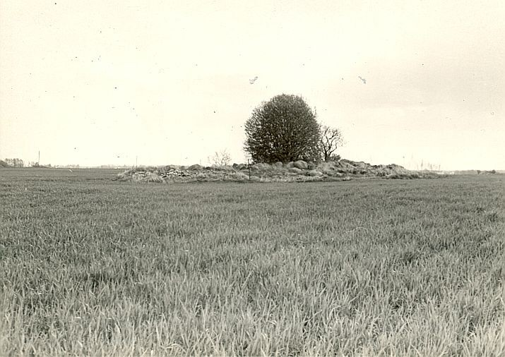 R.Kärner, 1990.a. Vaade edelast.
