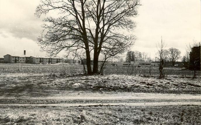 E.Väljal, 1985.a. Vaade mälestisele põhjast.