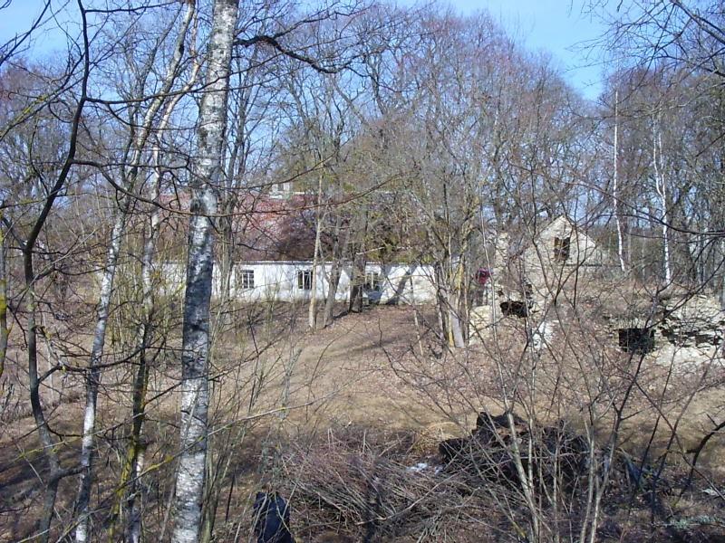 Vaade pargile  Autor Kalli Pets  Kuupäev  12.04.2006