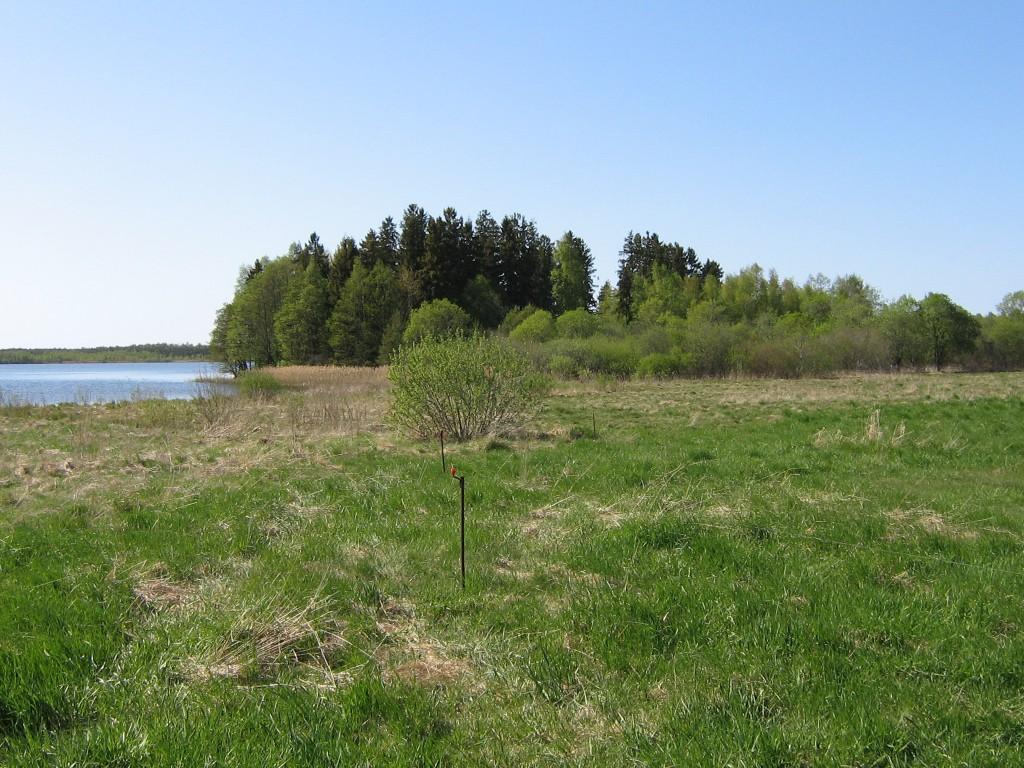 Vaade mälestisele kagust. Foto: Ulla Kadakas,17.05.2006.