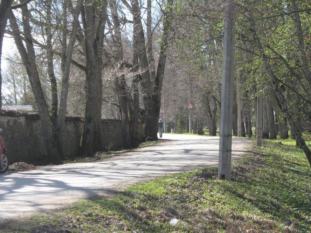 Vaade Kose-Uuemõisa  mõisa kivimüürile.