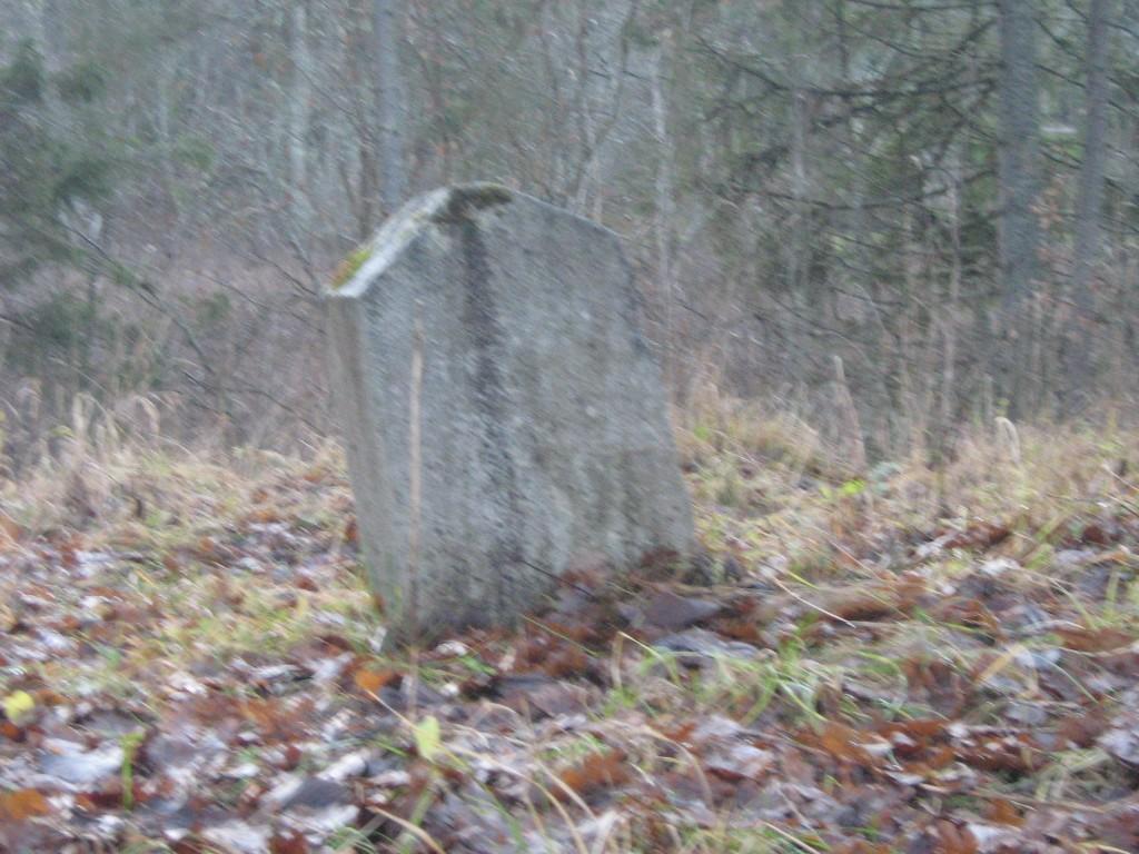 Kose-Uuemõisa mõisa kalmistu, vaade hauatähisele 2010.