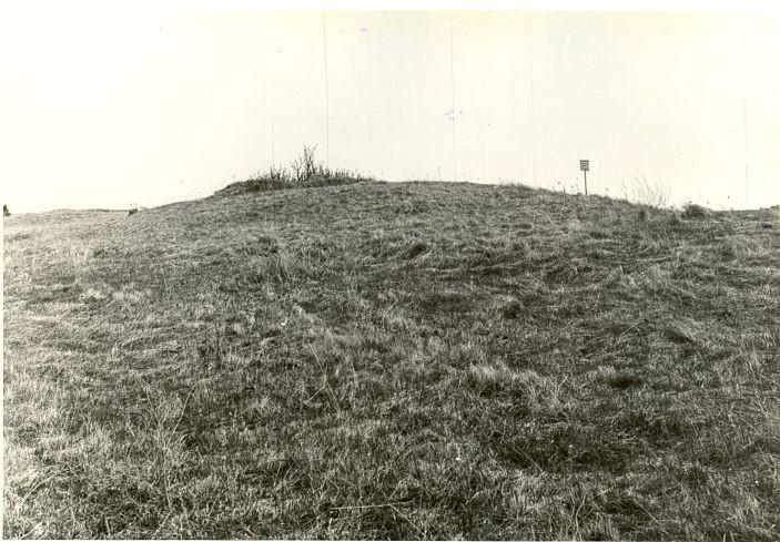 pilt -  Kivikalme, A. Sillasoo, mai 1979