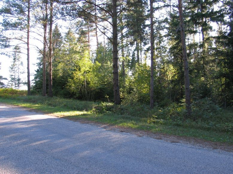 Foto: Ulla Kadakas, 16.09.2006.