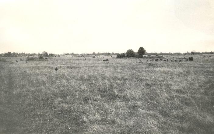 Muistsed põllud. Foto: V. Lang.