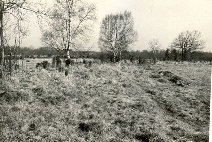 pilt - Kivikalmed - kagust, E. Väljal