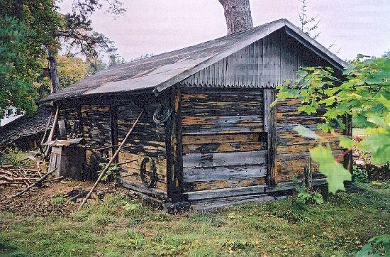 Puukuur foto K.Etverk  oktoober 2002