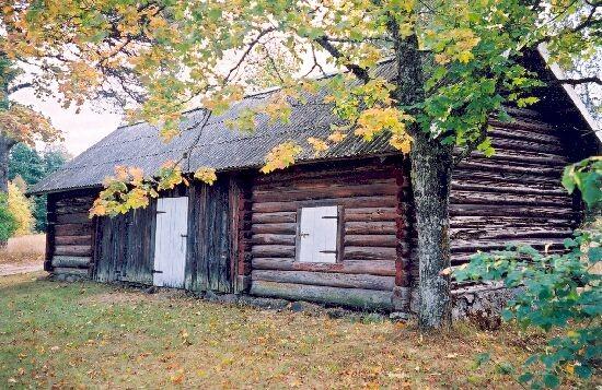 Heinakuur  foto K.Etverk  oktoober 2002