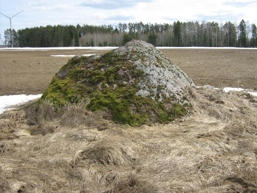 Lohukivi reg nr 10816. Foto: Ingmar Noorlaid, 15.04.2011.